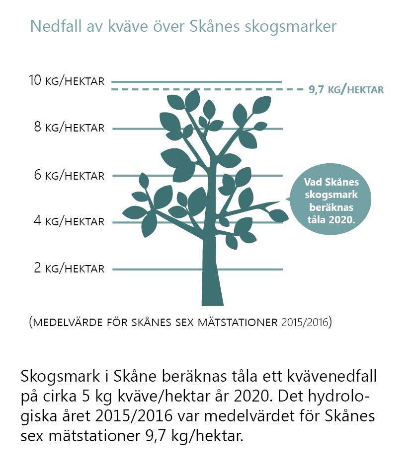 Nedfall av kväve över Skånes skogsmarker. (Medelvärde för Skånes sex mätstationer 2015/2016.) Illustration av ett lövträd med en skala i kg/hektar bakom. Trädet når upp till mätvärdet 9,7 kg/hektar. En bubbla visar att Skånes skogsmark beräknas tåla 5 kg/hektar år 2020. Text under: 2015/2016 var medelvärdet för Skånes sex mätstationer 2,6 kg/hektar, något över vad skogsmarken förväntas tåla.Skogsmark i Skåne beräknas tåla ett kvävenedfal på cirka 5 kg kväve/hektar år 2020. Det hydrologiska året 2015/2016 var medelvärdet för Skånes sex mätstationer 9,7 kg/hektar.
