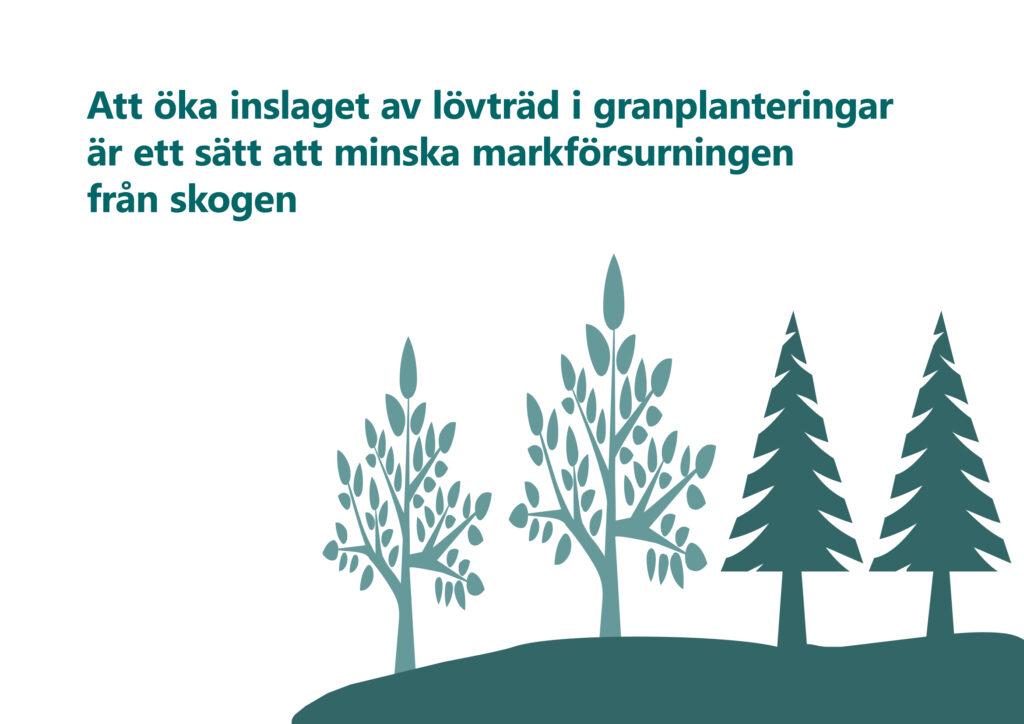 """Bilden visar texten """"Att öka inslaget av lövträd i granplanteringar är ett sätt att minska markförsurningen från skogen""""."""