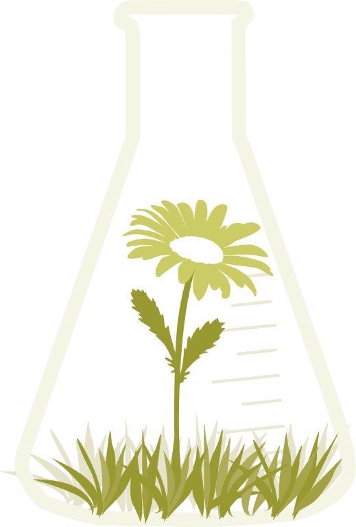 En e-kolv, inuti vilken det växer gräs och en blomma.