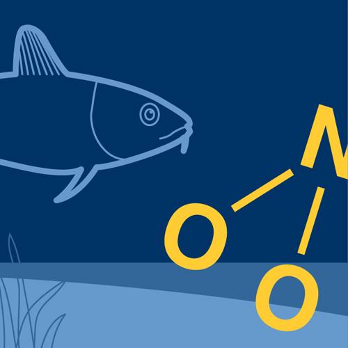 Illustration av miljömålet Ingen övergödning. En fisk som simmar under vattenytan. Illustration av Tobias Flygar.