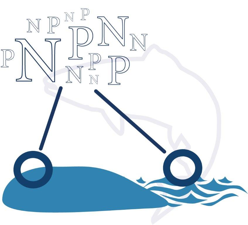 N (kväve) och P (fosfor) visas över land och vatten.