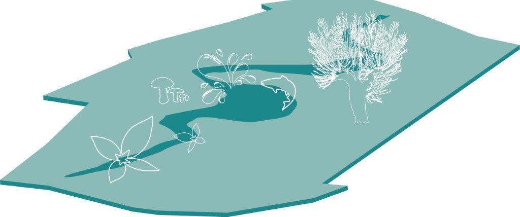 Illustration av ett vattendrag som ringlar genom landskapet på varierande sätt.