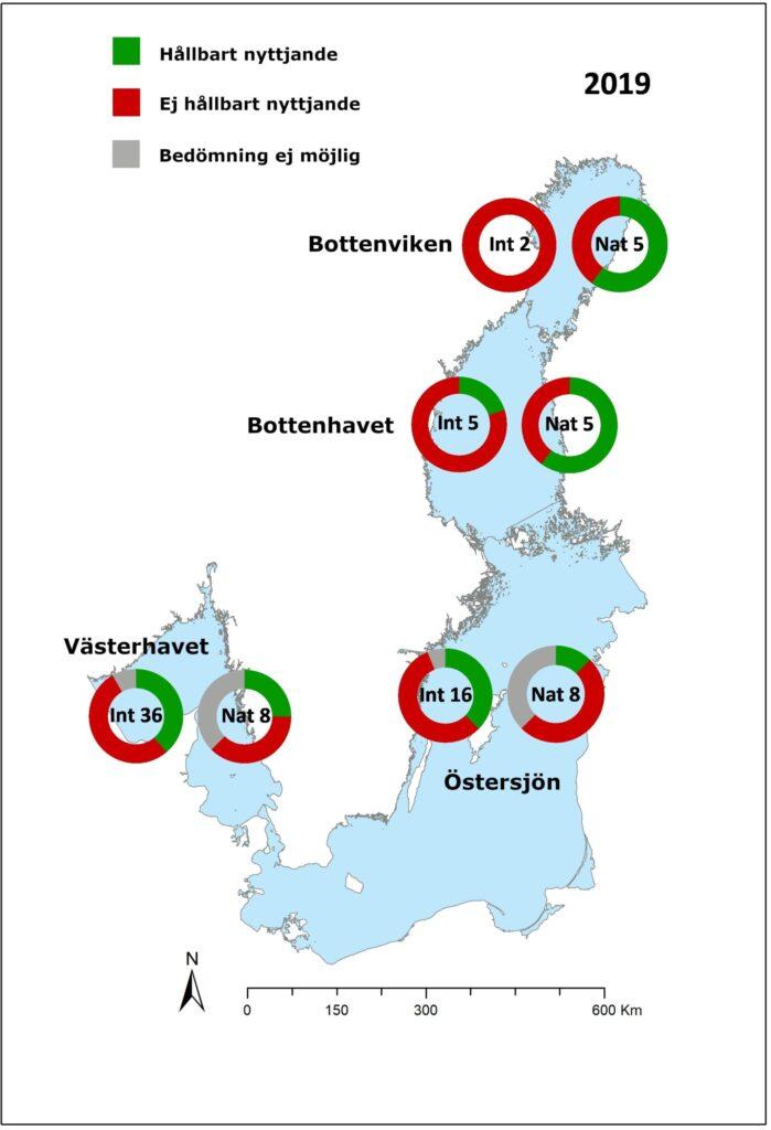 Kartan visar andelen hållbart respektive icke hållbart nyttjade bestånd i svenska havsområden år 2019