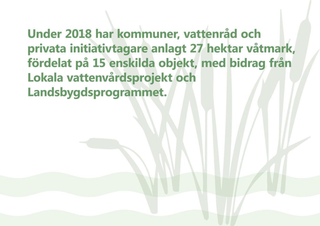 Under 2018 har kommuner, vattenråd och privata initiativtagare anlagt 27 hektar våtmark, fördelat på 15 enskilda objekt, med bidrag från Lokala vattenvårdsprojekt (LOVA) och Landsbygdsprogrammet. Illustration: kaveldun som sticker upp ur stiliserat vatten.