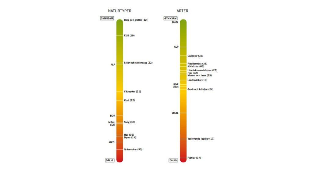 Bilden visar bevarandestatusen för grupper av arter och naturtyper samt regioner enligt Sveriges rapportering av bevarandestatus för arter och naturtyper i EU:s art- och habitatdirektiv för perioden 2013-2018.
