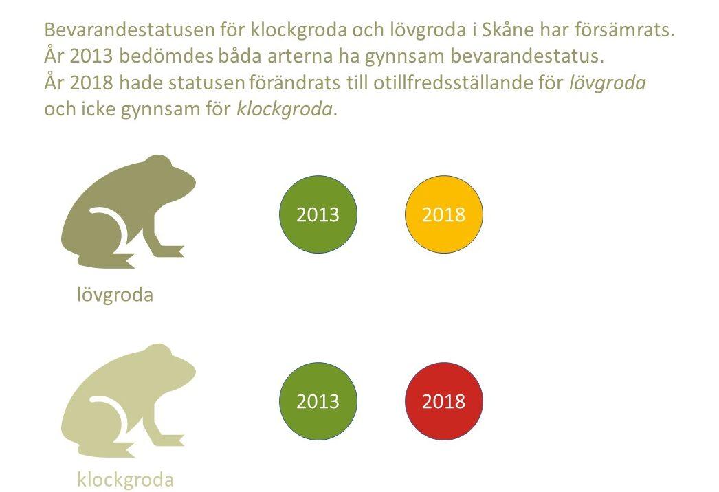 """Bilden visar texten """"Bevarandestatusen för klockgroda och lövgroda i Skåne har försämrats. År 2013 bedömdes båda arterna ha gynnsam bevarandestatus. År 2018 hade statusen förändrats till otillfredsställande för lövgroda och icke gynnsam för klockgroda."""""""