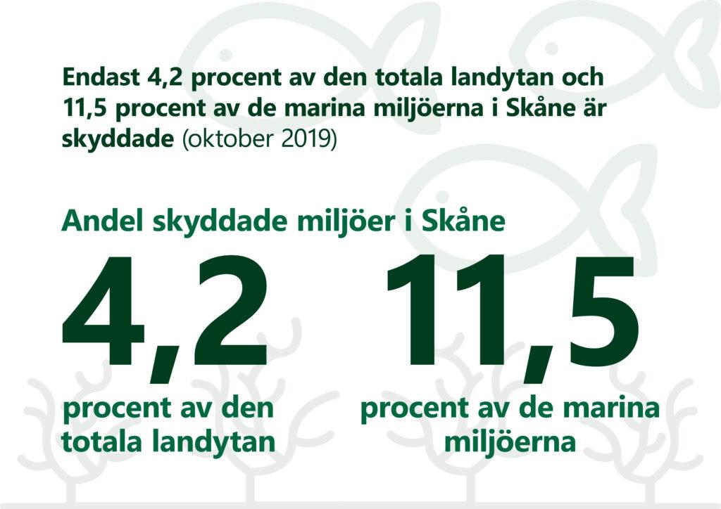 """Bilden visar texten: """"Endast 4,2 procent den totala landytan och 11,5 procent av de marina miljöerna i Skåne är skyddade oktober 2019"""". Illustration: Fiskar och växtlighet."""