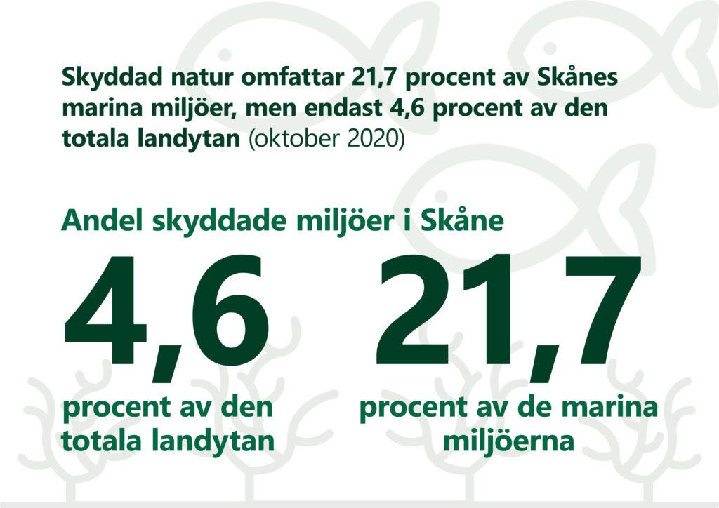 """Bilden visar texten: """"Skyddad natur omfattar 21,7 procent av Skånes marina miljöer, men endast 4,6 procent av den totala landytan. oktober 2020""""."""