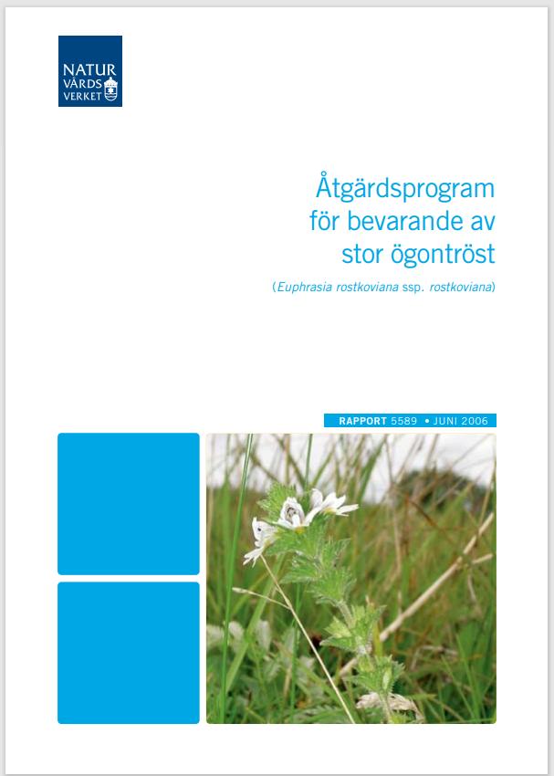 Framsida av rapporten Åtgärdsprogram för bevarande av stor ögontröst