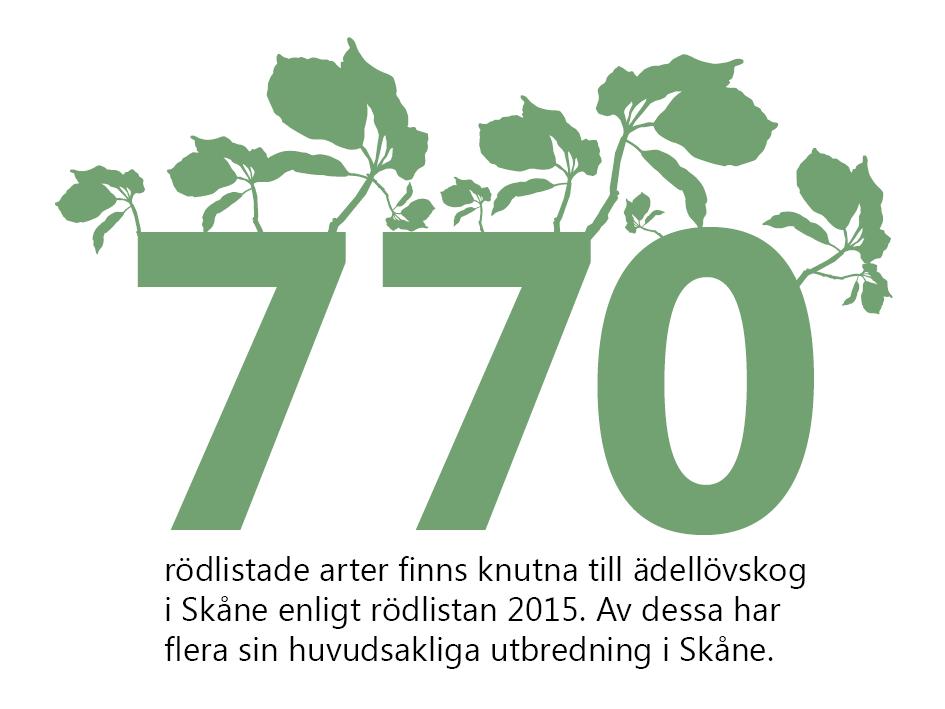 770 rödlistade arter finns knutna till ädellövskog i Skåne enligt rödlistan 2015. Av dessa har flera sin huvudsakliga utbredning i Skåne. Illustration: Talet 1170 står med stora siffror som det växer ut blad från toppen på.