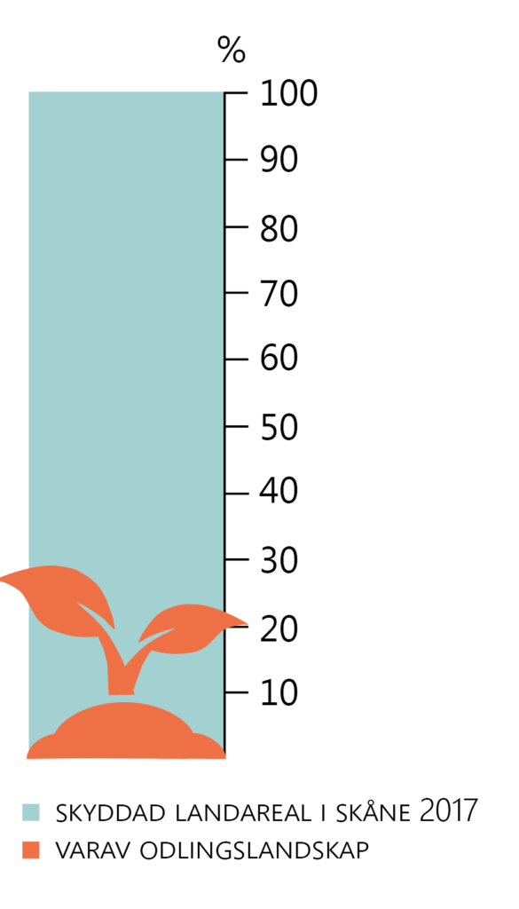 En grön stapel graderad från 0 till 100 %. Grön markerar Skyddad landareal i Skåne 2017. Med en orange planta markeras hur stor del av detta som är odlingslandskap (29 %).